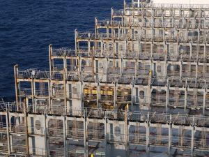 Deck Maintenance auf Mega Box Ships